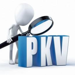 PKV-Figur-sucht-mit-Lupe